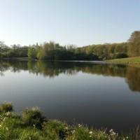 4.9 acre lake on 12 acre plot