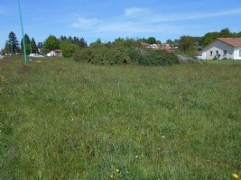 Constructable land of 1354m²