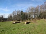 Building plot of 2654m2 with small wood