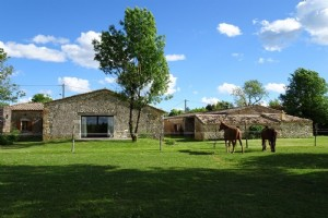 Stone country house fully renovated in one level