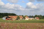 Large renovated farm with 2 gîtes, set in nearly 20 acres of land