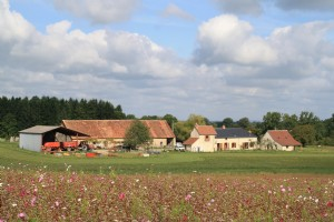 Large renovated farm with 2 gîtes, set in nearly 20 acres of land.