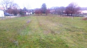Plot of land in the Charente Maritime, cheap plot