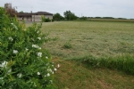 4 building plots available from 1280 m² to 1564 m²