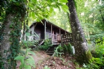 5 acres of chestnut forest, x2 spring fed lakes and traditional wooden chalet sleeps 4
