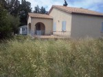 House With Field