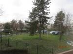 Calm near the Marne