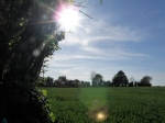 Beautiful Buildable Plot Of 1200m²