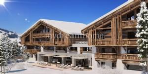 1 bedroom luxury Appartement Praz sur Arly (74120) near Megeve