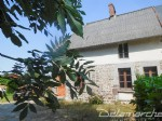 Le Guislain: 3 bedroom house with downstairs bedroom and garden.