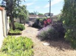 Town House for sale 3 bedrooms 650m2 land ,Walk to shop ,Pool