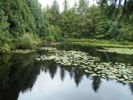 Land of 8879m² with beautiful 4500m² leisure lake