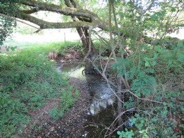 Land (1.4 acres or 5629m2) with stream and natural spring