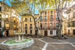 *RARE: Historic property located in Ceret's most beautiful square