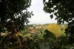 *Village house with 2 bedrooms, terrace and views and courtyard. Rare!