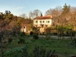 *Beautiful rare stone property edge of lively village, large garden