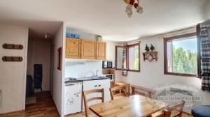 For Sale Studio Apartment On The Ski Slopes