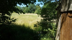 Leisure land of 4170 m² on the bank of the river with small beach.