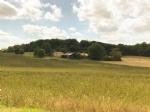 Big property, 2 houses, barn, hangar, big potential, calm, seccluded, no neighborg, open views