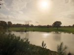 Domain, huge property, lakes, gite complex, hangars, ancient house, pool, woods, meadow