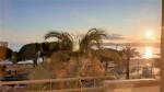 Frejus beach