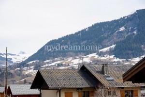 1 bedroom ski apartment Praz sur Arly (74120) village centre