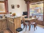 1 bedroom apartment + cabin in the center of Praz sur Arly (74120)