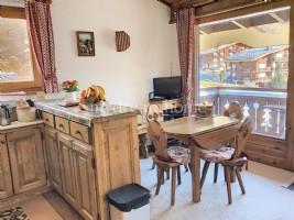 1 bedroom apartment + cabin in the center of Praz sur Arly (74120)