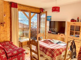 1 bedroom apartement + cabin in the heart of Praz sur Arly (74120)