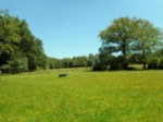 Farmhouse for sale 2 bedrooms 124661m2 land ,South facing ,Over 1 acre land