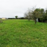 Plot Of Land for sale 1334m2 land ,Walk to shop