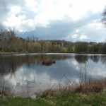1 acre fishing lake with land
