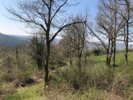 North Aveyron - Florentin Lacapelle - Building land flat, quiet location on the edge of hamlet