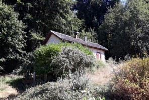Nature lovers paradise with 1 bedroom chalet, lake, woodlands and pasture in total approx 7.5 a