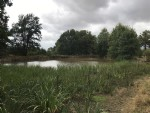 2.8 Acre rural plot including a lake.