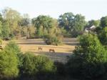 Equestrian Property near Bussiere-Poitevine in the Haute Vienne
