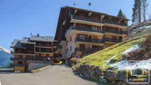 A 2 bedroom, 1 bathroom ski-in, ski out apartment, with balcony and cave.