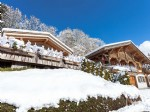 Magnificent double chalet with jacuzzi, 10 minutes' walk from the shops, 5 minutes from the slopes.