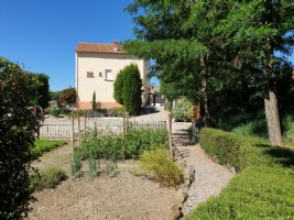 Well established B&B with 260 m² of living space on 1140 m² with terrace/courtyard and pool.