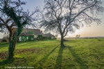 Property to restore: house + barn on 1 hectare. Panoramic view