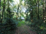 Forest with 160 m2 agricultural shed