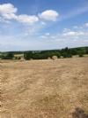 Idyllic setting for this farmhouse to restore