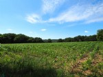 Plot of agricultural land with a total capacity of 26,891 m² including a small part in coppice