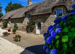 Magnicient thatched house set in 4.5 acres