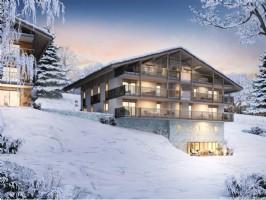 For Sale : 2 bedrooms Ski Apartment in COMBLOUX.