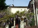 Near Chalais Village house with small garden. South Charente.