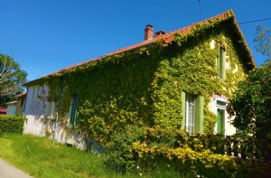 Beuatiful character house, with 2 apartments, several outbuildings on 1HA3