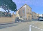 *Large Vigneronne near the beach!