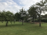 0.25 Acre plot (with change of use application for a house with 150m2 footprint).