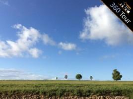 Land For Sale - Paddocks or Building!